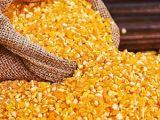 批发玉米渣